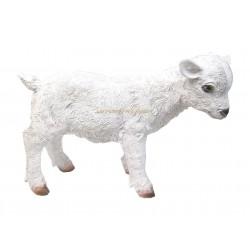 Chevreau blanc en résine haut.31cm